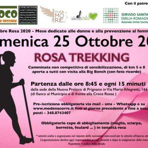Locandina dell'iniziativa Rosa Trekking del 25 ottobre 2020